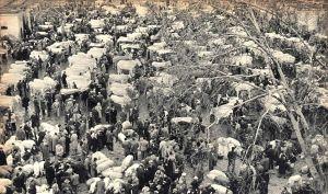 Cattle_market_in_Nola,_Campania,_1960
